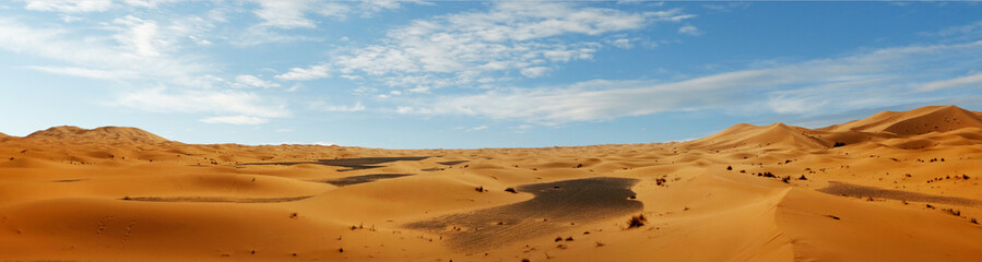 sand dune in the sahara desert  Wall mural