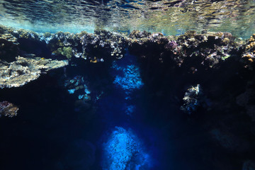 Fototapete - Underwater cave and coral reef