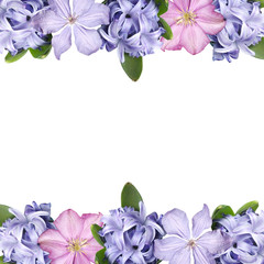 Wall Mural - Beautiful floral background of hyacinth and clematis. Isolated