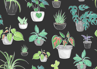 Aluminium Prints Plants in pots Seamless pattern with plants in pots