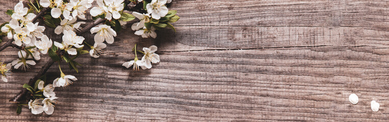 Spring Tree Flowers on background of old vintage board