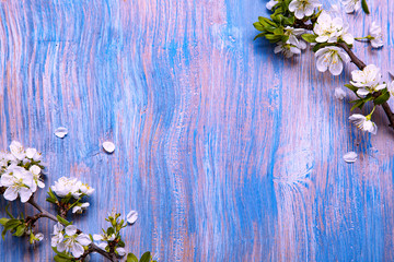 Spring Flowers on the blue background of an old vintage blue board