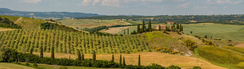 Poster Fleur Tuscany - Landscape panorama, hills and meadow, Toscana - Italy