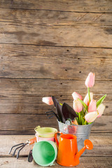 Gardening tools and flowers on wooden terrace background. Spring gardening concept, copy space for your text