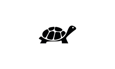 vector illustration of an turtle
