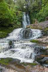 McLeans Falls Catlins. South Island New Zealand. Tropical rain forest.
