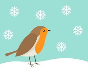 Cute robin bird in winter scenery.