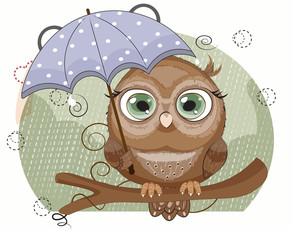 owl with umbrella under rain