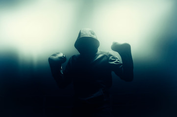 Boxer is in the ring. The concept of victory, sports, boxing, kickboxing, mma, muay thai.