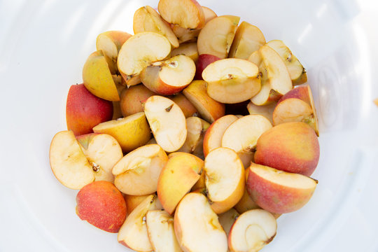 Apple slices in container