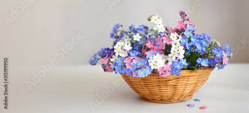 Mothers Day flowers. Forget me not flowers in the basket
