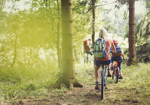 Family mountain biking on trail in woods