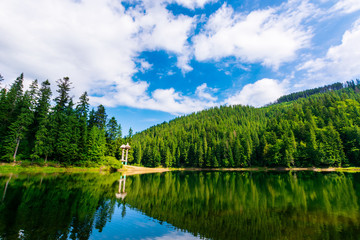 synevir mountain lake in summertime. great outdoor nature scenery. coniferous forest with tall trees on the shore reflecting in clear water. deep blue sky with clouds. beautiful landscape