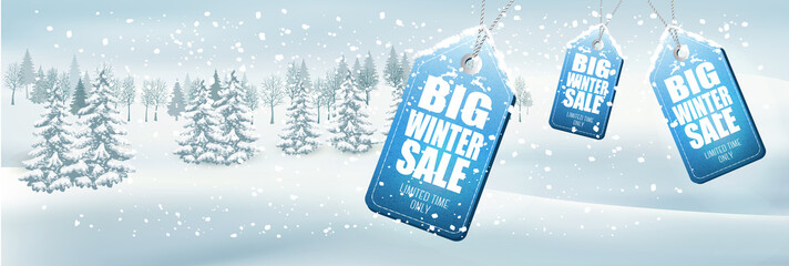 Winter Sale Background with winter landscape and forest. Vector