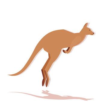 Kangaroo icon cartoon endangered wild Australian animal