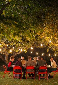 Friends enjoying dinner garden party under trees with fairy lights