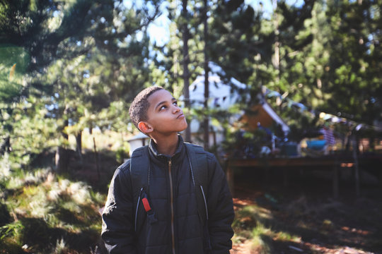 Curious boy hiking in woods