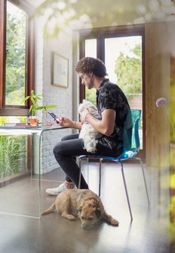 Young man with dogs working at desk in home office