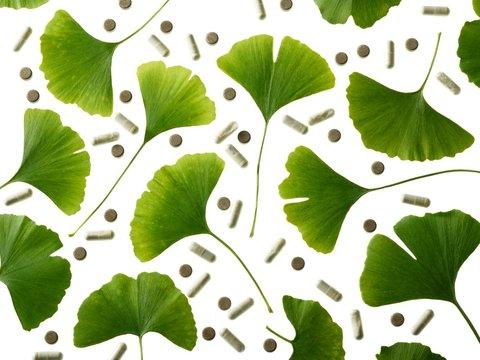 Maidenhair leaves