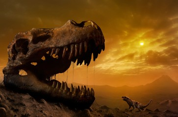 Illustration of ptilodus and T rex skull