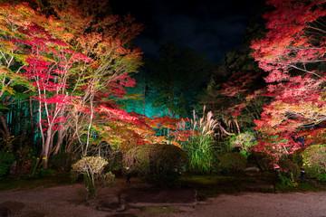 Poster de jardin Kyoto 京都 南禅寺の塔頭寺院 天授庵(てんじゅあん)の紅葉 夜景