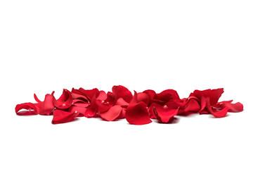 Red rose petals Wall mural