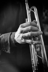 Trumpeter's hand, vintage effect, close up, monochrome