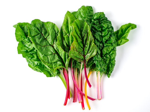 Rainbow Chard Stock Photos And Royalty Free Images Vectors And Illustrations Adobe Stock