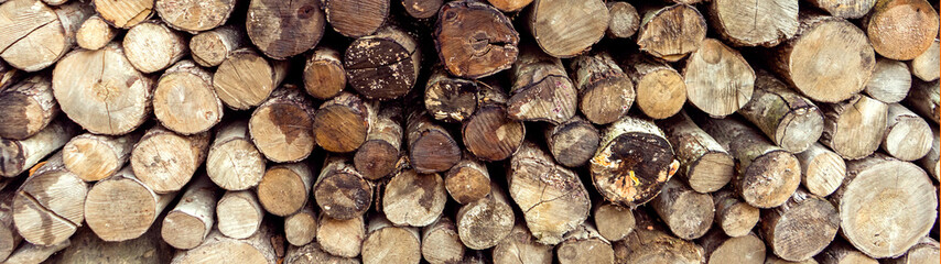 pile stacked natural old sawn wooden logs background, top view