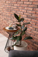 Stylish room interior with beautiful plant and side table near brick wall