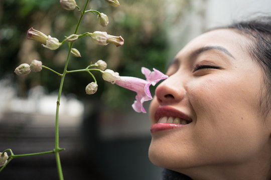 Charming Asian female on vacation sniffing flower at city street