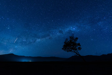 Indonesia, East Java, Milky Way galaxy on blue starry night sky over silhouette of lone tree in?Bromo?Tengger?Semeru?National Park