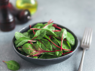 Fresh salad of green chard leaves or mangold on gray stone background. Fresh baby beet leaves in craft ceramic bowl. Copy space for text. Natural day light