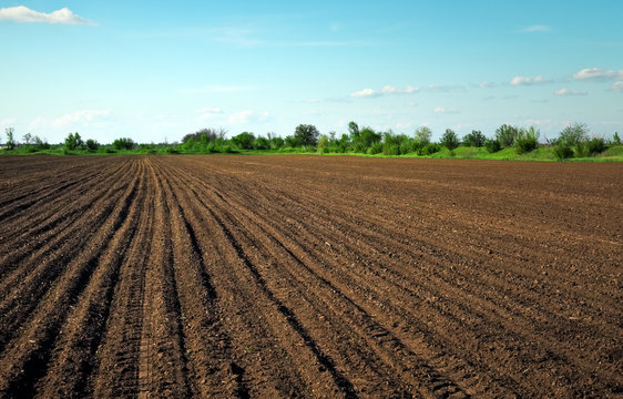 Preparing field for planting. Plowed soil in spring time with two tubes and blue sky.