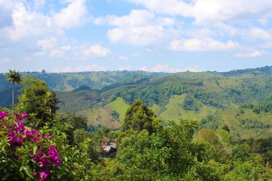 Paisaje montañoso en eje cafetero colombiano