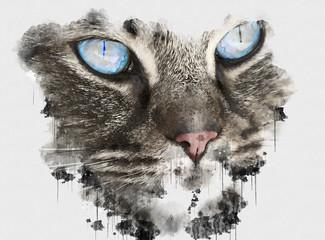 Foto op Canvas Hand getrokken schets van dieren Digital watercolour painting close up photo of a cute Cat. Beautiful paint of small carnivorous mammal. House Cat Animal. Canvas Wallpaper of Human Favorite Pet. Creative Digital Paintings