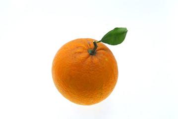 Wall Mural - fresh orange isolated on white background