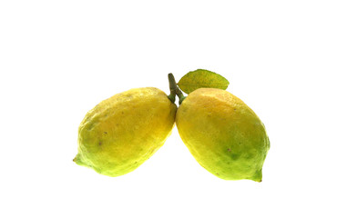 Wall Mural - close up on fresh lemon isolated on white background