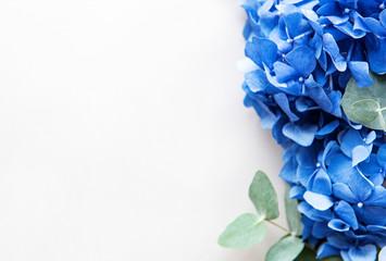 Deurstickers Hydrangea Blue hydrangea flowers