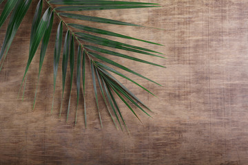 Palm Sunday. Palm brunch on wooden background. Easter