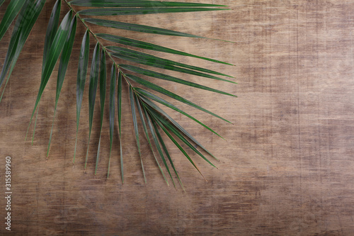 Wall mural Palm Sunday. Palm brunch on wooden background. Easter