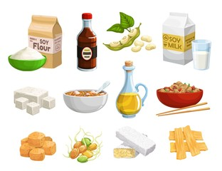 Soy food and vegan products, organic healthy natural nutrition. Vector soy food products, meat and cheese, milk and oil, soybeans sprouts, butter and flour, tofu skin and vegan eating ingredients