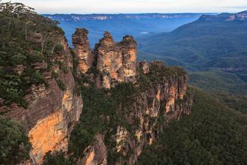 Garden Poster Australia Eucalyptus forests in the Blue mountains, Katomba, Leura, Sydney