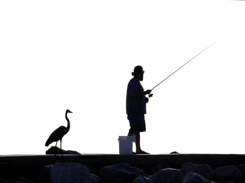 Silhouette of a fisherman and a Great Blue Heron on a fishing pier at St. Pete Beach, Florida.