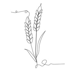 Ears of wheat one line drawing on white isolated background