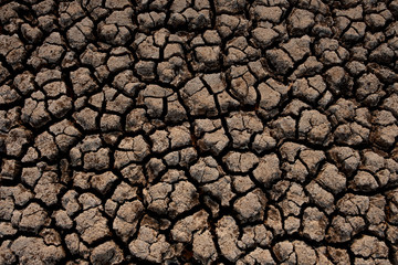 Cracked and dry soil in arid areas landscape, Drought crisis