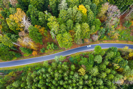 Germany, Baden-Wurttemberg, Aerial view of car driving along road cutting through green Swabian-Franconian Forest in autumn