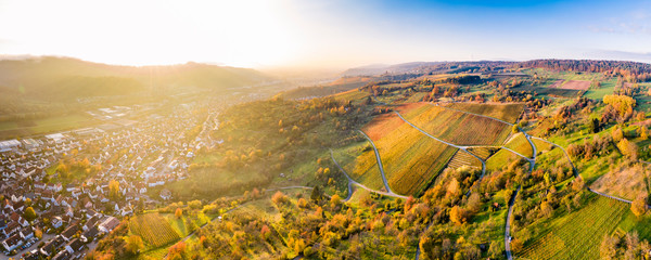 Germany, Baden-Wurttemberg, Remstal, Aerial view of vineyards in front of countryside town at autumn sunset