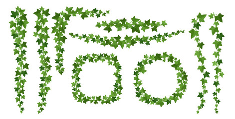 Obraz Green ivy frames flat vector illustrations set - fototapety do salonu