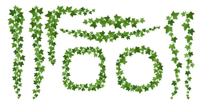 Green ivy frames flat vector illustrations set